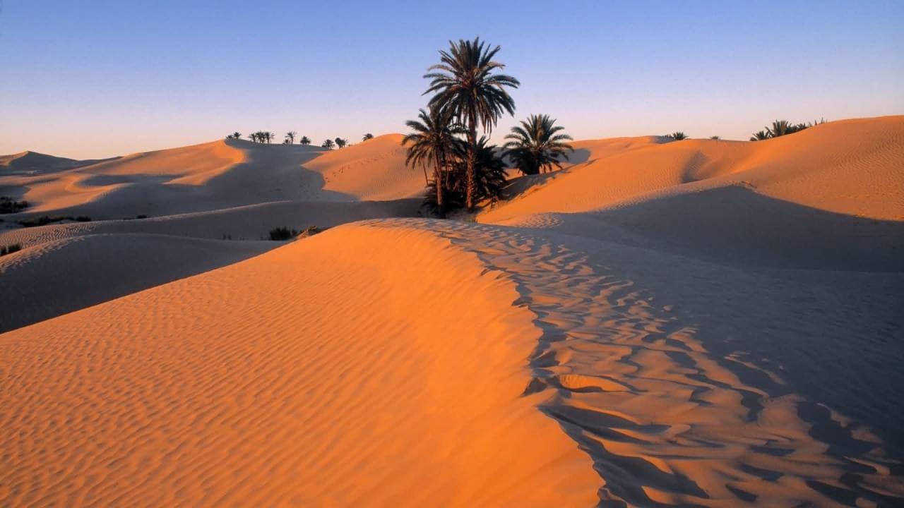 meditazione nel deserto 6