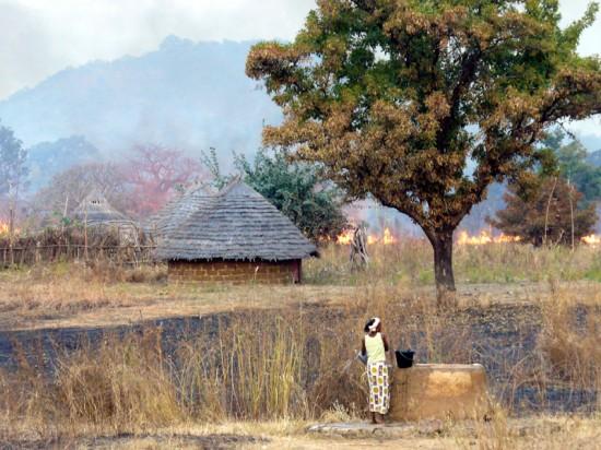 senegal safari 4