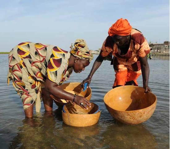 Senegal tra storia natura ed etnie