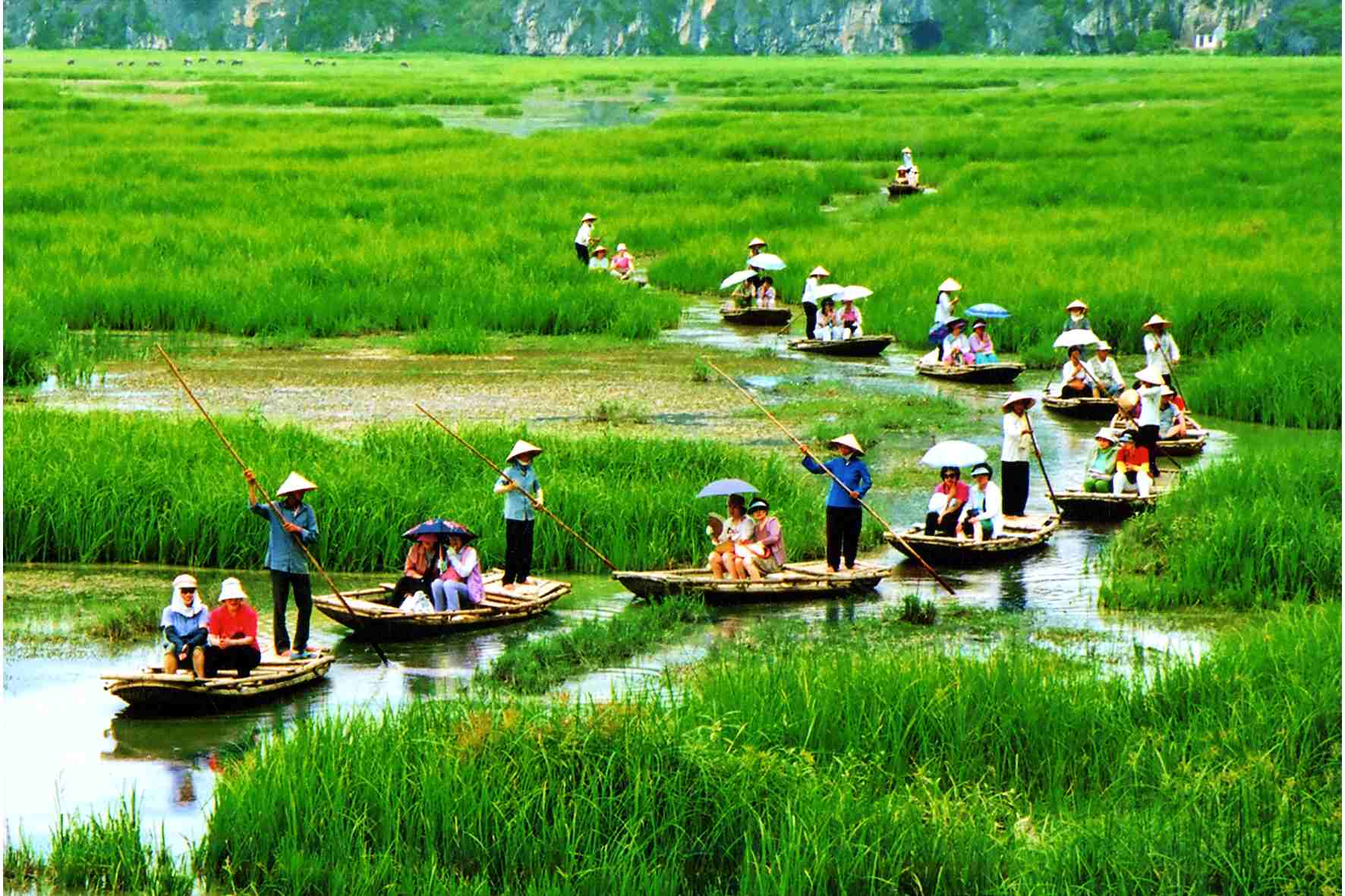 Hoa-Lu-Tam-Coc-Rowing-in-the-rice-field