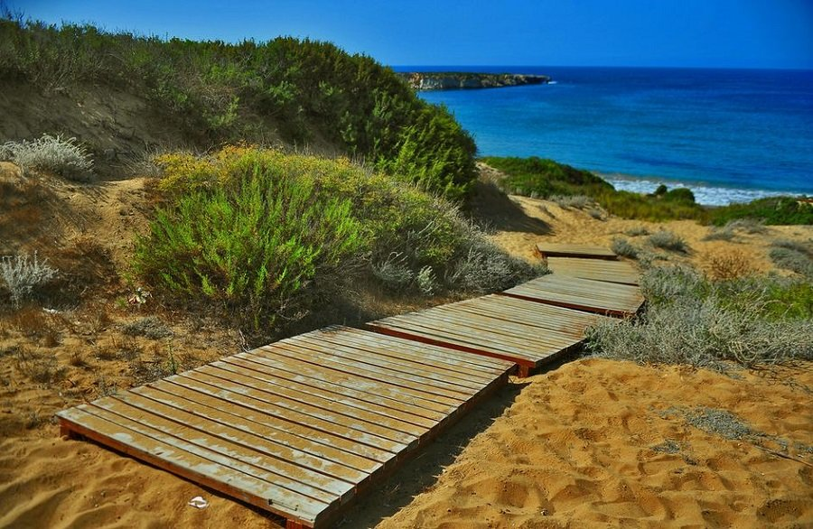 Lara_Beach_Paphos