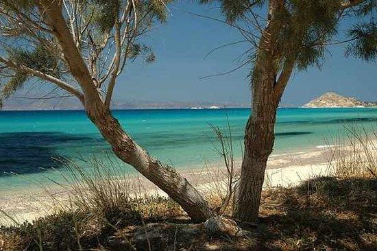 spiaggia di kastraki naxos 2