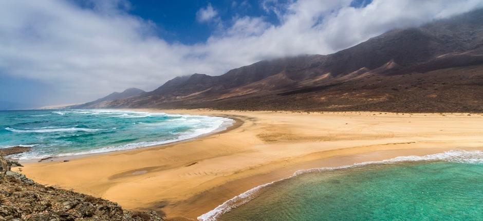 playa de cofetefuerteventura