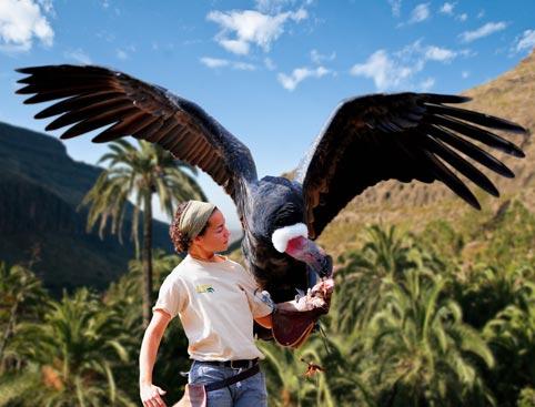 palmitos-park Gran Canaria