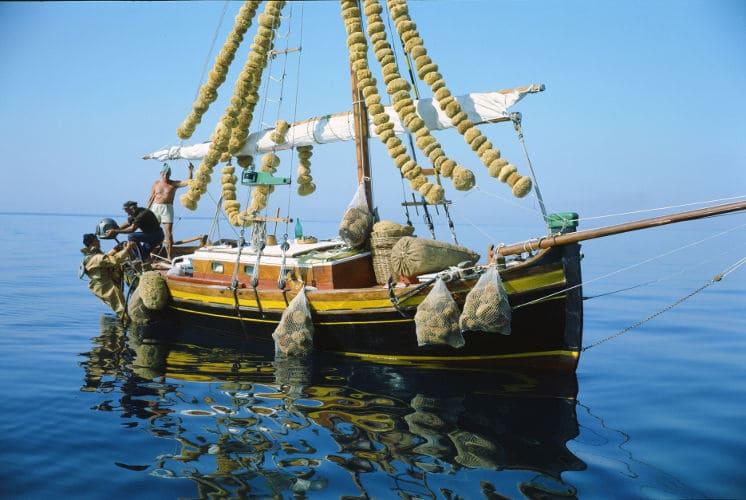 kalymnos barca spugne